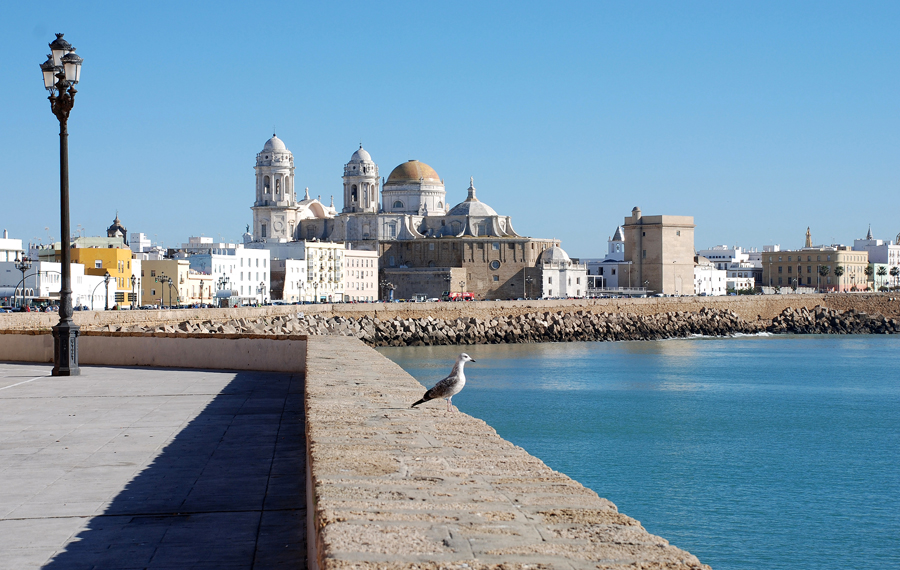 Cadiz cathedrals