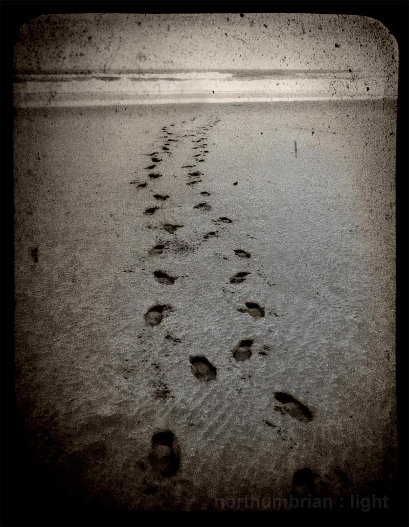 Selkie footsteps