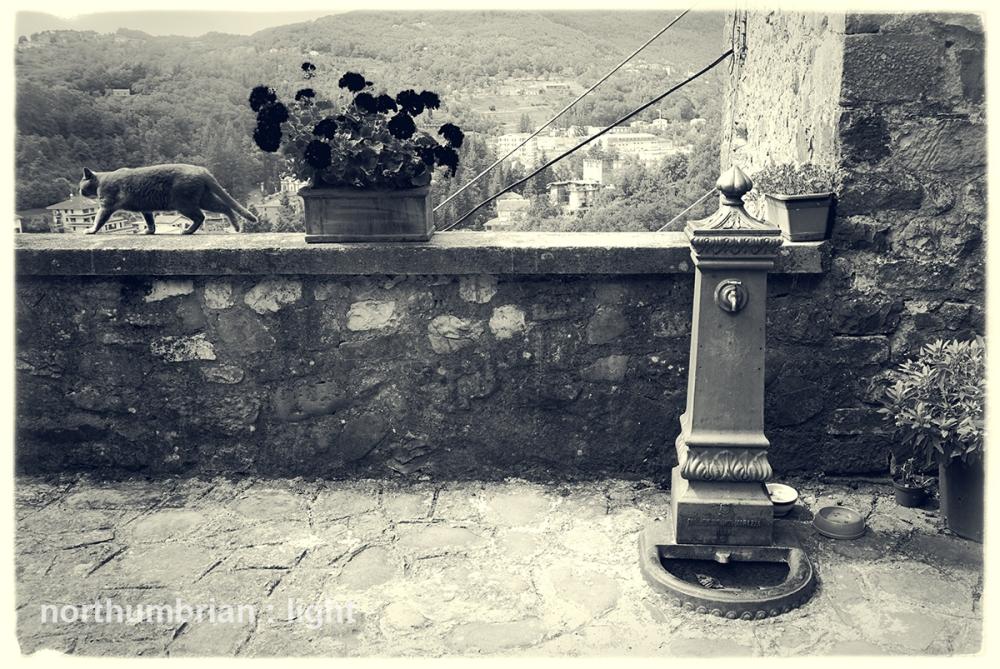 Mochignano Chiesa, Bagnone