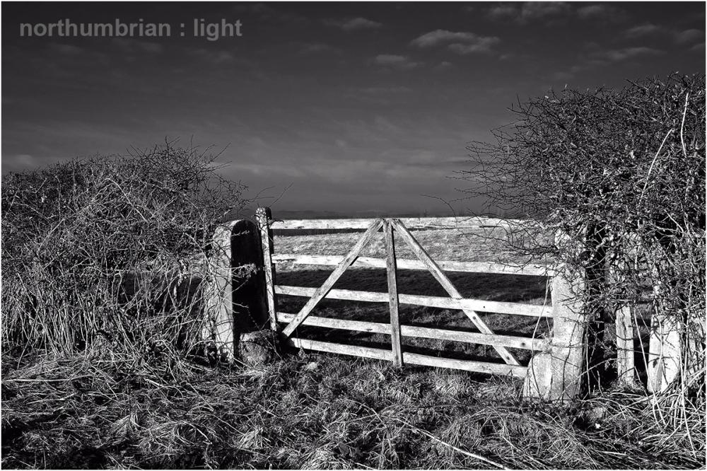 Shining gate ...