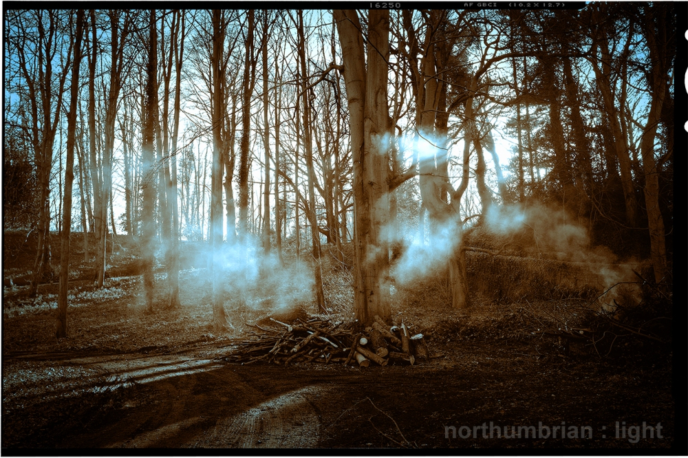 Smoke in the woods...