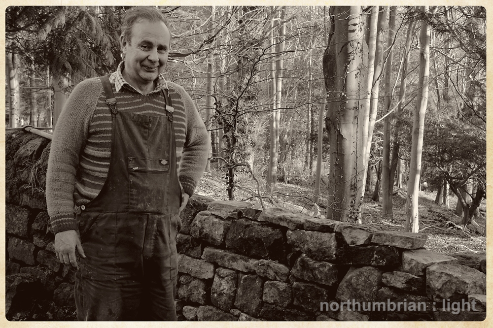 ... plenty of work to do - drystone wall repairs on the Beaufront Estate