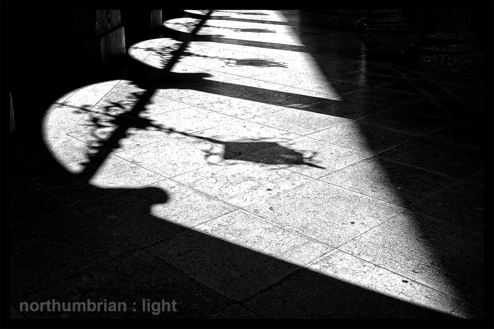 Afternoon shadows ...