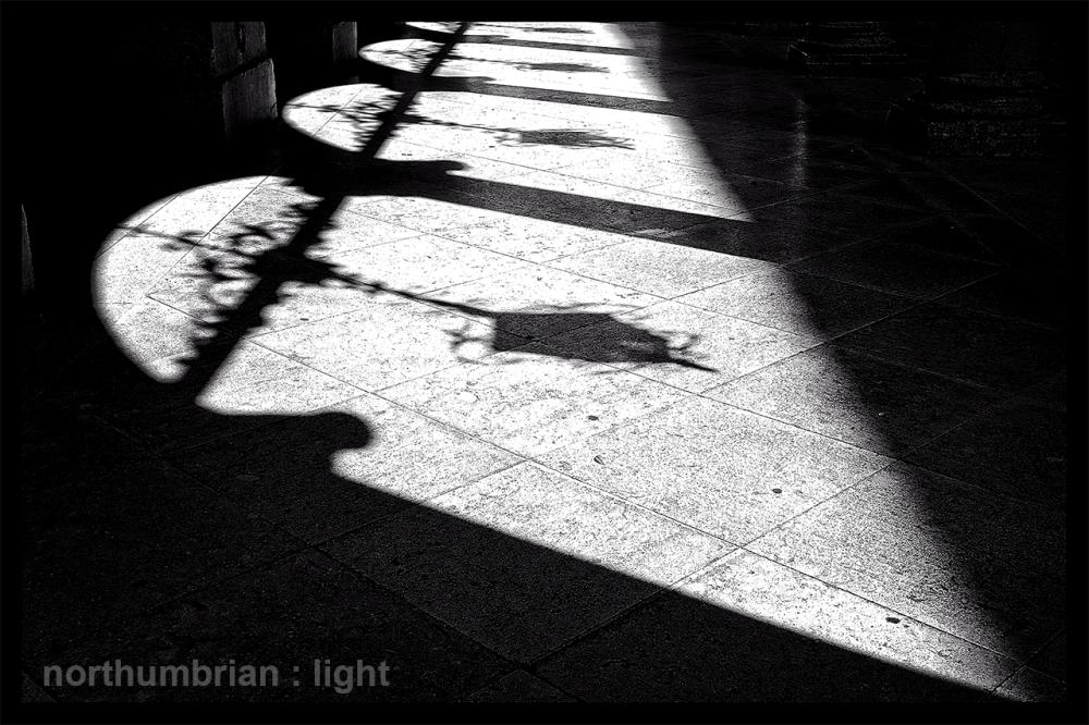 Afternoon shadows ...