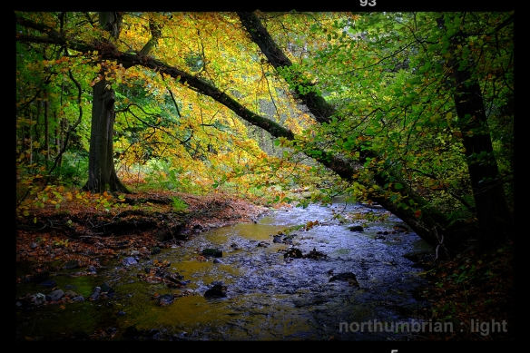 Autumnal waters ...