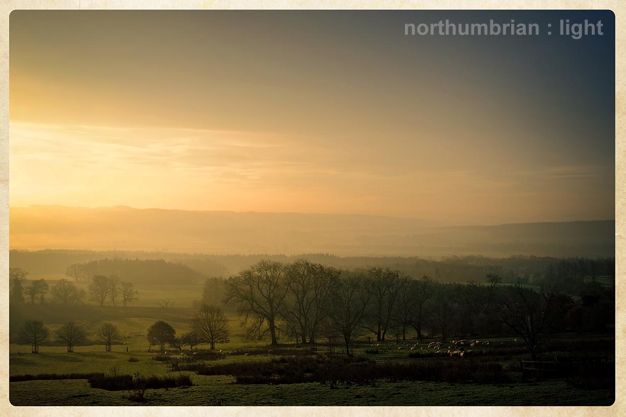 Across the Tyne Valley ...