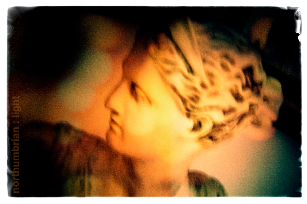 Another Holga ...